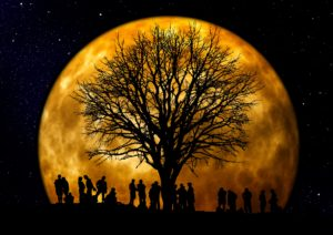 Full Moon Circle, phoenixville, ritual, women's circle, healing circle, 19460